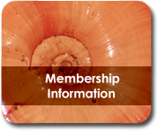 Malacological Society  Membership Information