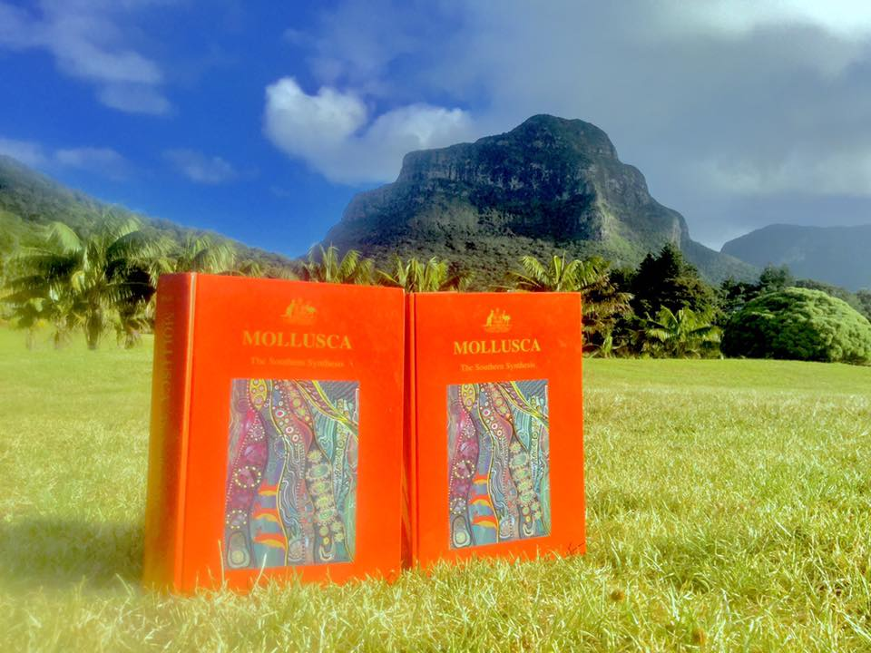 Mollusca: The Southern Synthesis against the backdrop of Lord Howe Island, Photo Caitlin Woods