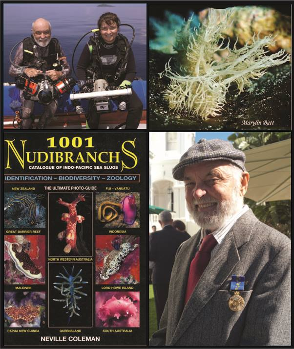 Image (clockwise from top left): Neville Coleman on a dive with JoeY (photo: Ian Bates); Melibe colemani (photo: Marylin Batt [with permission]); the cover of 1001 Nudibranchs (2001); Neville Coleman proudly displaying his OAM, awarded in 2012 (Courtesy Jorina van der Westhuizen (JoeY))
